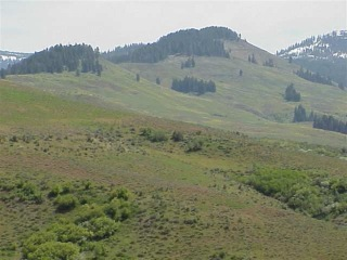 TBD-Middle-Fork-Council-Idaho-83612