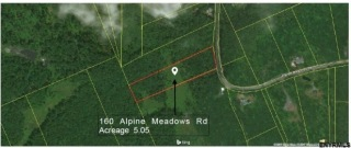 160 ALPINE MEADOWS RD, Greenfield, NY 12859 - Image