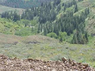 Lot 4 Middle Fork Rd, Council, ID 83612 - Image