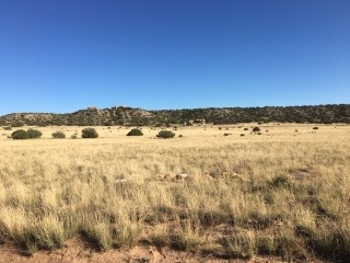 B4 L46 U14 Big Fork Road, Santa California City, Medanales, NM 87579 - Image