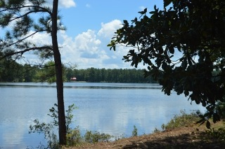 300 CRYSTAL LAKE DRIVE, Attapulgus, GA 39815 - Image