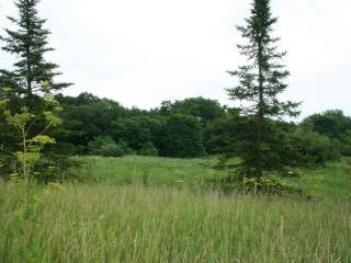 0000 Route 120 Highway, Bull Valley, IL 60098 - Image