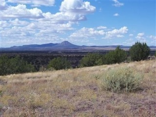 204 Juniperwood Rnch Un 3 Lot 204, Ash Fork, AZ 86320 - Image