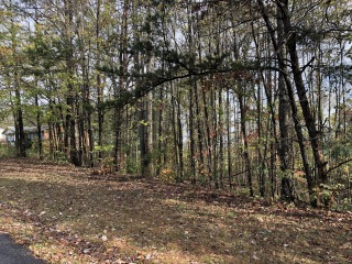Lot 8 Indian TRL, Henry, VA 24102 - Image