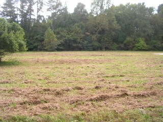 Lot 1 KAYAK COVE Road, Hallieford, VA 23068 - Image