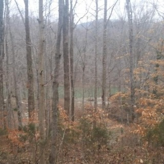 Lot 11 Sabre Park Rd, ALPINE, TN 38543 - Image