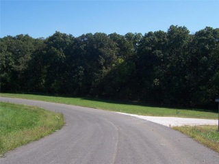0 Lot 66 The Timbers, Hawk Point, MO 63349 - Image