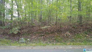 Lot 10-A S HOLLOW RD, BLOUNT SPRINGS, AL 35079 - Image