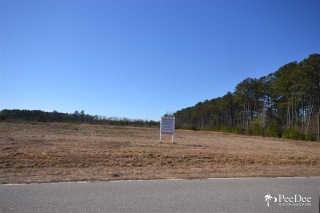 Presbyterian Road, Florence, SC 29501 - Image