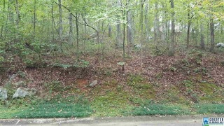 Lot 15 N HOLLOW RD, BLOUNT SPRINGS, AL 35079 - Image