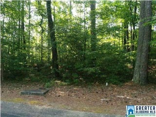 Lot 80-A RIDGE DR, BLOUNT SPRINGS, AL 35079 - Image