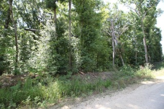 10 LAKEVIEW DR, COTTONTON, AL 36851 - Image