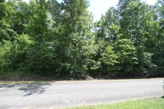 Lot 1 County Rd 4, COTTONTON, AL 36851 - Image