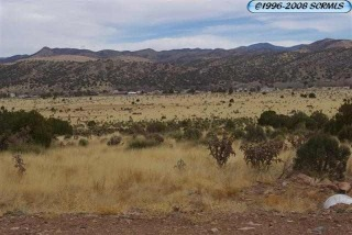 Lot 20 Poncho, Mimbres, NM 88043 - Image
