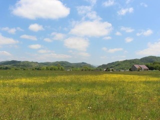 Bank St, Tellico Plains, TN 37385 - Image