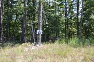 Lot 45 Black Diamond DR, New Castle, VA 24127 - Image