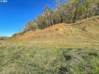 675 NORTH VIEW DR 57, Winchester, OR 97495 - Image