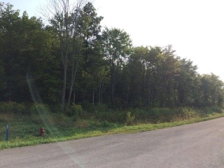 6838 RT 338 Lot 5, Knox, PA 16232 - Image