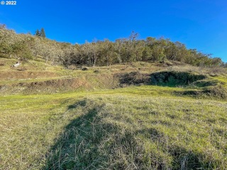 747 NORTH VIEW DR 55, Winchester, OR 97495 - Image